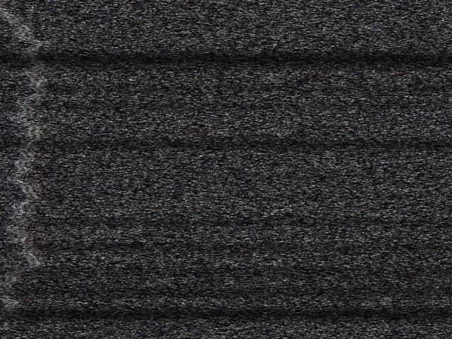 chubby housewife sex video